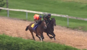 2016年皐月賞馬ディーマジェスティ、2歳7月の調教映像